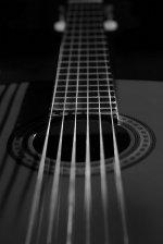 Darmowa muzyka
